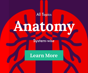 Anatomy Total (Premium)